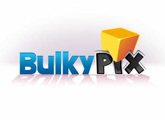BulkyPix - logo