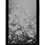 YotaPhone - tyl, czarny
