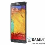 Samsung Galaxy Note 3 Neo - 2